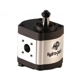 Hydraulic Pump 31100130010