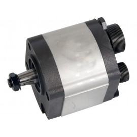 Hydraulic Pump 3054300R93